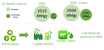 Figure 2: Facts of the Biofuel numbers