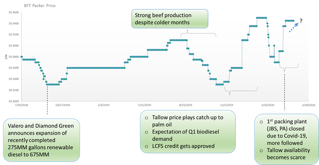 Figure 3: Analysis on Tallow historic prices